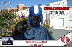 Cobra Commander Wants You by Naust187
