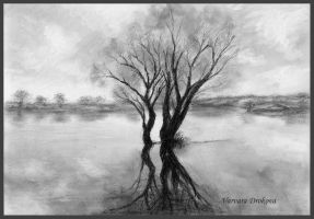 Lonely Tree by Aelroun