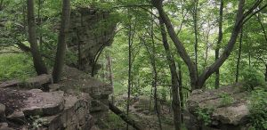 Rocky Forest Cliff Landscape by FantasyStock