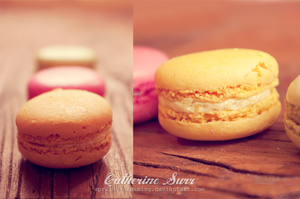 Macaroons by apricot-dreaming
