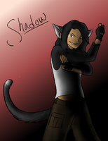 Heroes of the SSPC: 'Shadow' by Chardove