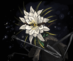 the night blooming witch by Malusdraco
