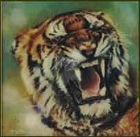 Tiger Tiger Burning Bright by Lynne-Abley-Burton