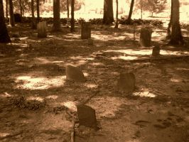 Rice Cemetery 2 by Lily-Hith-Silme