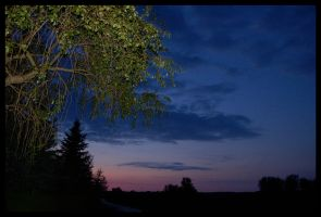 Night or day? by thermann