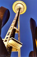Space Needle 1 by rayt