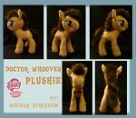 Doctor Whooves Plushie by nooby-banana