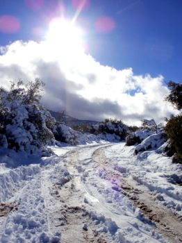 Winter Road by TheHarlequinRomance