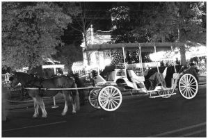 Horse and Buggy by texasghost