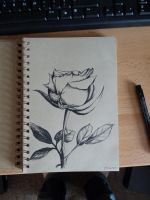 Rose sketch in my new book by GalaxyTheory
