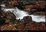 Rushing By by stetre76
