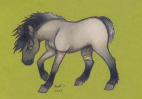 Horse Card 2- Taro by who-stole-MY-name