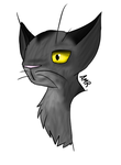 2. Graystripe by SuicuneNorth