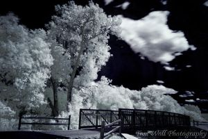 Bridge In Infrared by tomwoll
