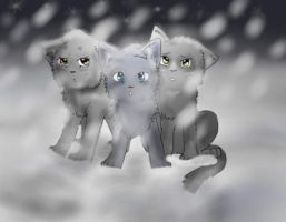 Three Kits in the Snow by xPetalstormx