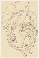 Dragons- clean sketch by ZairaHusky