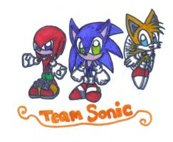 Team Sonic by chaixing