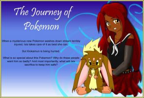 The Journey of Pokemon by sailordusk