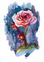 Watercolour pink rose by Ametist-nyako