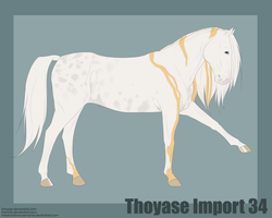 Thoyase Import 34 by frenchly