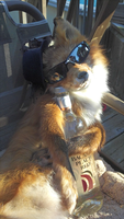 life of the party by TabbyFoxTaxidermy