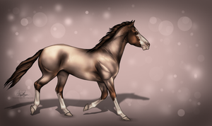 Ruby by CoutureEquineDesigns