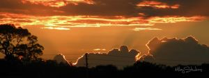 Orange Haze by MikeyStudios