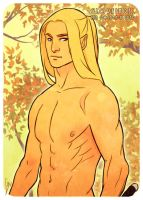 Glofindel The Golden-Haired by Lelia