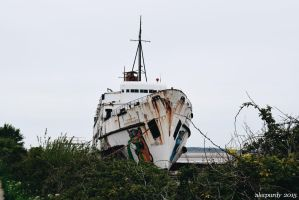 Duke Of Lancaster In Flintshire by alecpurdy