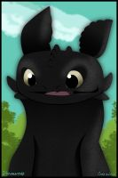 Toothless by coda-leia