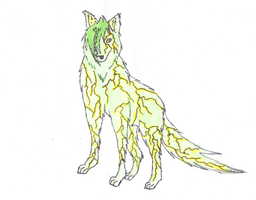 Wolf form Inazu by AskXylia