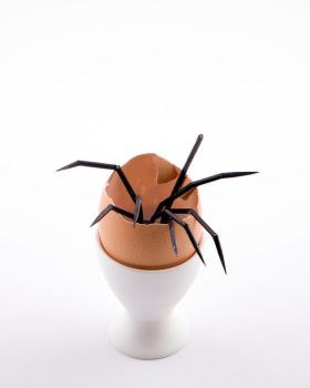 Spider Egg by Ollywood