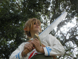 Link Skyward Sword 11 by JustBeFriend