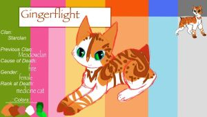 Gingerflight TcotV :::ref sheet::: by TheClansOf-TheValley