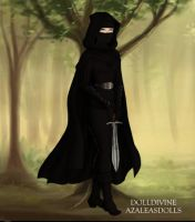 The Masque Noir 13th Century France by LadyIlona1984