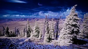 Top of Baldy Mountain by swiftmoonphoto