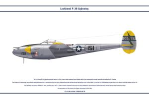 P-38J USAAF 67th FS 1 by WS-Clave