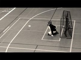 Floorball goalie by SebastianSkarp