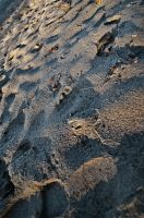 A sand's perspective. by Fullness