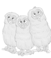 Owl Babies by Chicken-skin