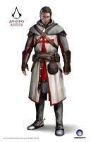 ACC Rogue Shay Templar Armor 11th Cen by satanasov