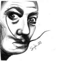 Salvador by siriously