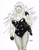Black Canary by DRMoore