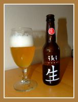 Chinese beer by inbalance