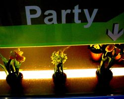 Plants having a party by Februar