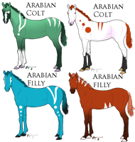 Blood Lines Colored Arabian Foals: Draw To Adopt by StoryBookRosesAdopts