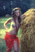 peasant woman by tamerlanych
