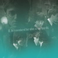 101 Reasons to Ship Harry and Hermione by Lennves
