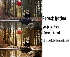 Forest Action by sd-stock