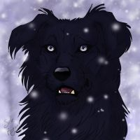 Padfoot by SickRogue